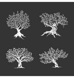 Olive trees silhouette icon set isolated on dark vector