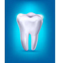 White tooth on a blue background vector image