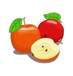 Color apple fruit vector