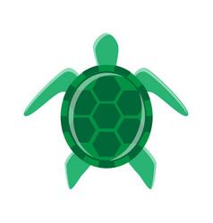 minimal turtle vector image vector image
