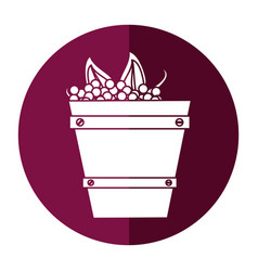 Wooden basket with harvest grapes shadow vector