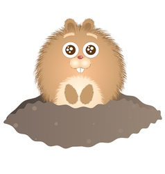 little groundhog vector image