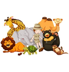 Wild animals and safari kid vector image