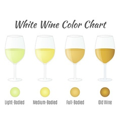 White wine color chart hand drawn wine glasses vector