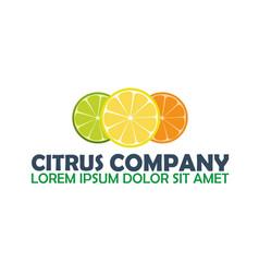 Citrus logo company lemon logo vector