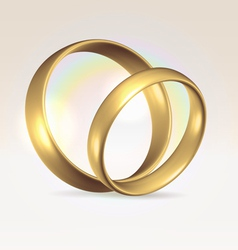 Couple of wedding rings vector image vector image