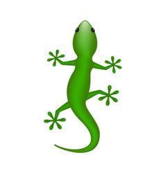 Lizard in green design vector
