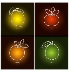OrangeLemonMandarinLime vector image