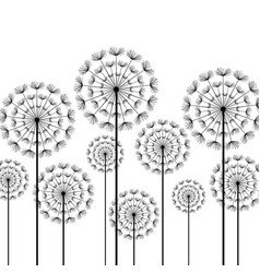 black stylized dandelion on white background vector image