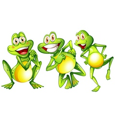 Three smiling frogs vector image