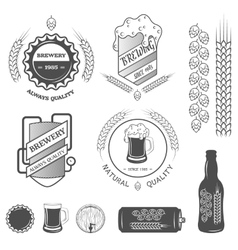 Brewing emblems and design elements vector image vector image