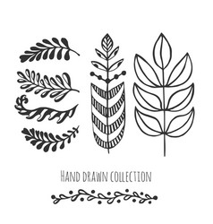 ethnic collection with stylized doodle leaves vector image