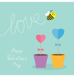 Heart stick flower in the pot and bee with dash vector image