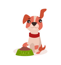 Jack russell terrier character eating food cute vector
