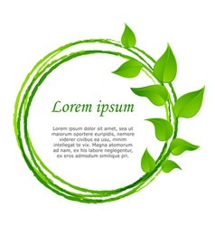 Green leaves or leaf graphic icon design vector