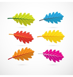Colorful oak leaves isolated on white background vector