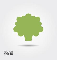 broccoli flat icon colorful logo vector image vector image