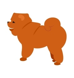Flat pet chow vector