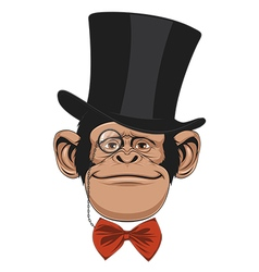 Monkey hat head vector image