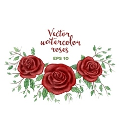 Watercolor red roses frame vector