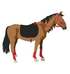Horse on a white background vector