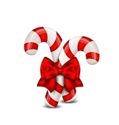 Christmas candy cane isolated on a white vector
