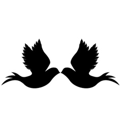 Delicate doves icon image vector