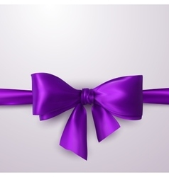Purple Bow And Ribbon vector image vector image