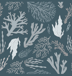 Trendy summer seaweed design vector