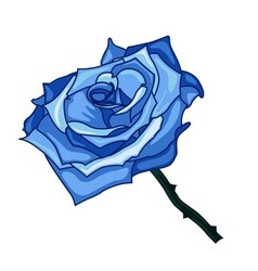 blue frozen rose on a white background vector image