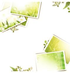 nature photos vector image