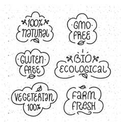 Gmo and gluten free bio ecological natural vector