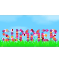 Title of summer flowers vector image