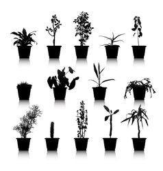 Set of silhouettes house plants vector image