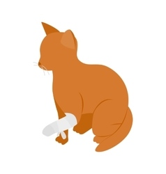 Cat with broken paw icon isometric 3d style vector