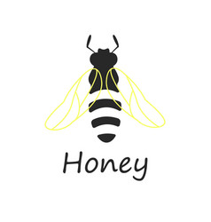 bee honey vector image