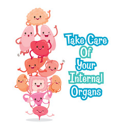 Human internal organs cartoon characters funny vector