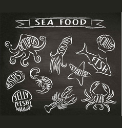 seafood chalk contour on blackboard vector image vector image