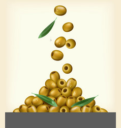 Realistic of green olives pitted vector
