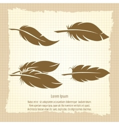 Vintage feather set on notebook page vector image