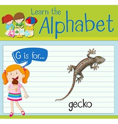 Flashcard alphabet G is for gecko vector image vector image