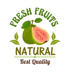Guava Fresh natural tropical exotic fruit emblem vector image vector image