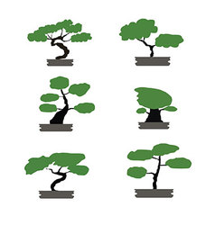Bonsai trees set japanese style isolated vector