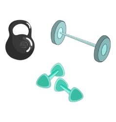 Sport equipment color vector