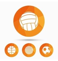 Sport balls volleyball basketball soccer vector