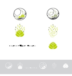 Green terrarium with plants vector