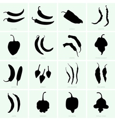 Pepper varieties vector