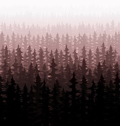 Background nature forest landscape pine fir trees vector image