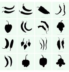 Pepper varieties vector