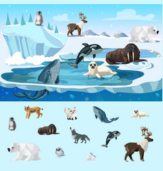 colorful arctic wildlife concept vector image vector image